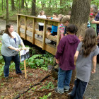 Environmental Education-Outdoor Classroom 2