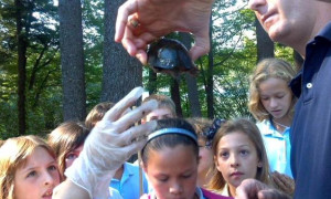 Students learn about wildlife at Waban's TREE Center in southern Maine